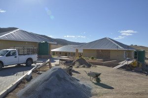 Eastern-Cape-IDT-Independent-Development-Trust-023