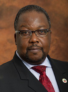 Minister Of Public Works Mr Nkosinathi Nhleko